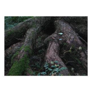 Ancient Roots Invitations