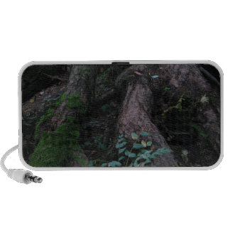 Ancient Roots Portable Speakers