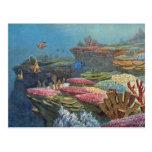 Ancient Sea Coral Antique Print Post Card