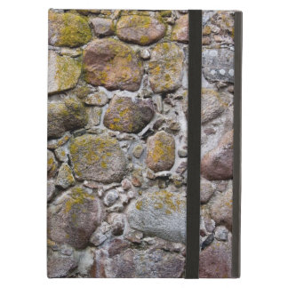 Ancient stone wall iPad air cases
