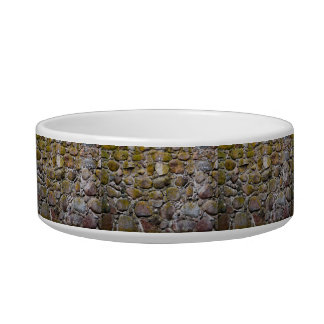 Ancient stone wall cat bowls