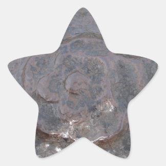 Ancient Tudor Rose Star Sticker