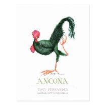 Ancona Hen, tony fernandes Postcard