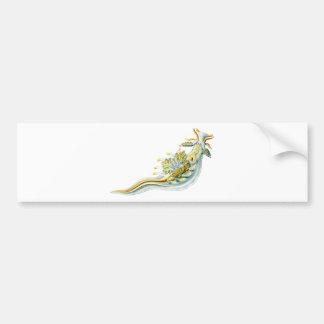 Ancula gibbosa bumper sticker