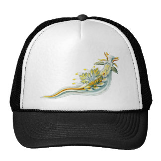 Ancula gibbosa trucker hat