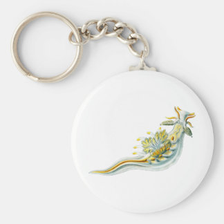 Ancula gibbosa keychain