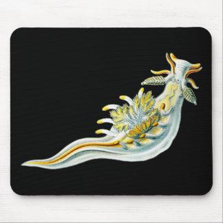Ancula gibbosa mouse pad