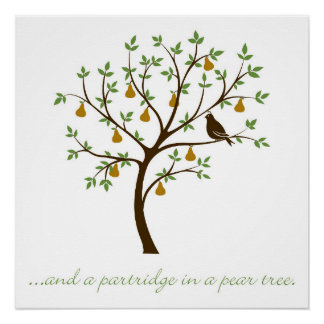 And a partridge in a pear tree poster