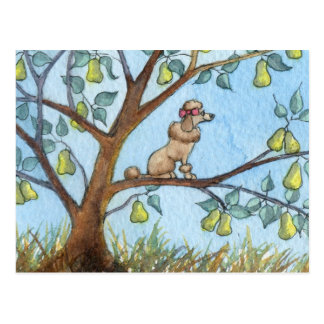 ...And a poo-oodle in a pear tree... Postcard