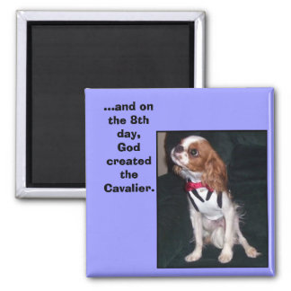 and on the 8th day,God created the cavalier magnet