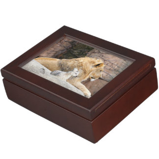 And The Lion Shall Lie Down With The Lamb Memory Box