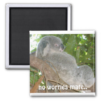 And The Problem Is, no worries mate.., ©2010BLHS 2 Inch Square Magnet