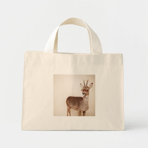 And you are? canvas bag