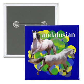 ANDALUSIAN BUTTONS