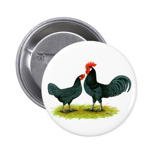 Andalusian Chickens Pinback Button