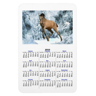 ANDALUSIAN COLT IN WINTER 2012 Calendar Magnet Vinyl Magnet