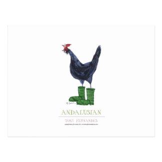 Andalusian Hen, tony fernandes Postcard