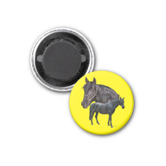 Andalusian Horse 1 Inch Round Magnet