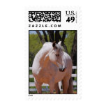 ANDALUSIAN HORSE 2 POSTAGE STAMPS