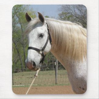 ANDALUSIAN HORSE HEAD MORISCO MOUSE PAD
