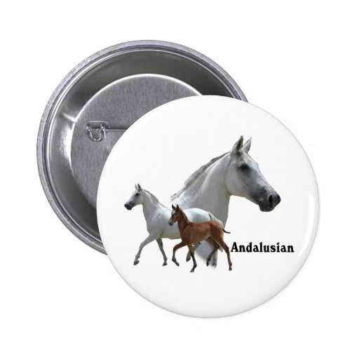 Andalusian Horse Pinback Button