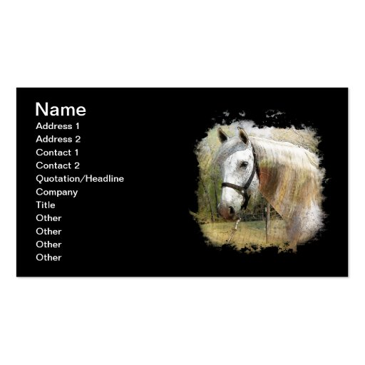 ANDALUSIAN HORSE PORTRAIT Double-Sided STANDARD BUSINESS CARDS (Pack OF 100)