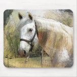 ANDALUSIAN HORSE PORTRAIT MOUSE PAD