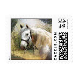 ANDALUSIAN HORSE PORTRAIT POSTAGE STAMPS