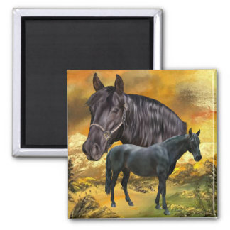 Andalusian Horse Print 2 Inch Square Magnet