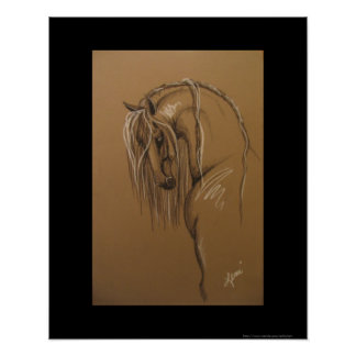 Andalusian Horse Sketch Poster