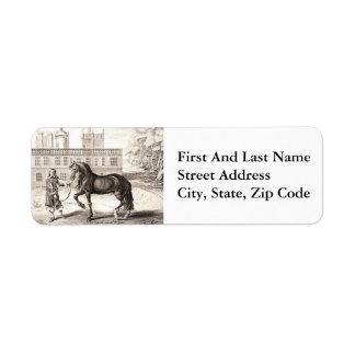 Andalusian Horse Vintage Drawing Art Return Address Label