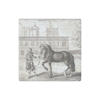Andalusian Horse Vintage Drawing Art Stone Magnet