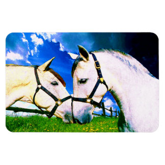 ANDALUSIAN KISS Magnet