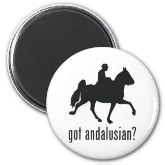 Andalusian Fridge Magnet