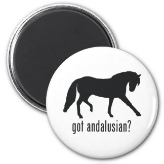Andalusian Fridge Magnets