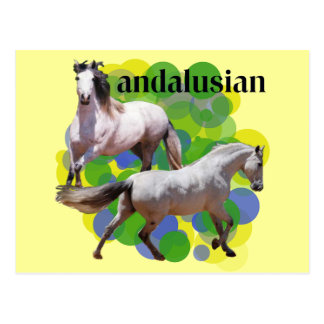 ANDALUSIAN POST CARD
