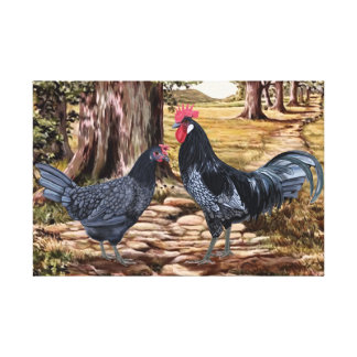 Andalusian Rooster and Hen in Wooded Setting Canvas Print