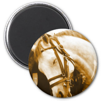 Andalusian Round Magnet Refrigerator Magnets