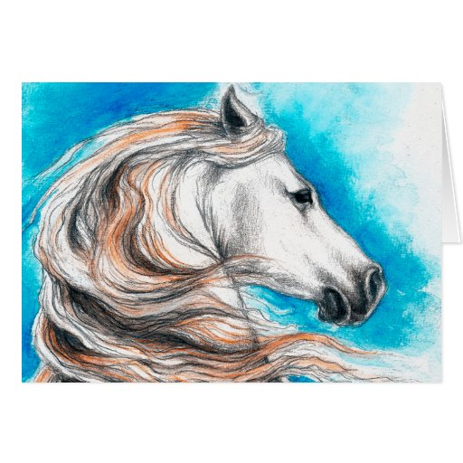Andalusian Stallion Horse Greeting Cards