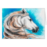 Andalusian Stallion Horse Greeting Card