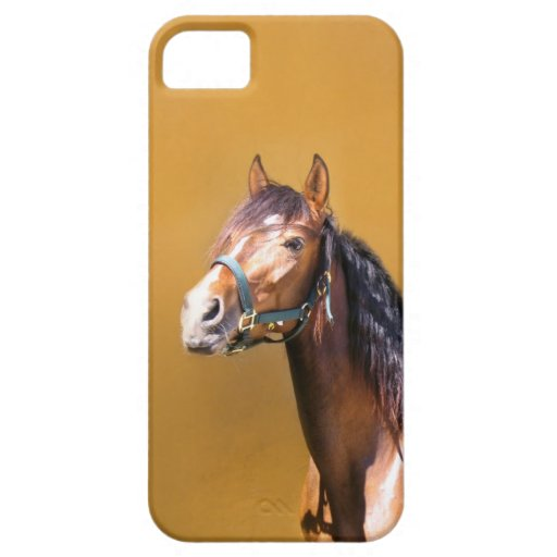 Andalusian Stallion iPhone case iPhone 5 Cases