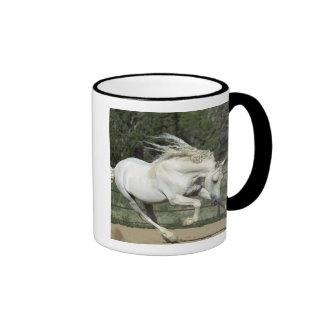 Andalusian Stallion running, PR Ringer Mug