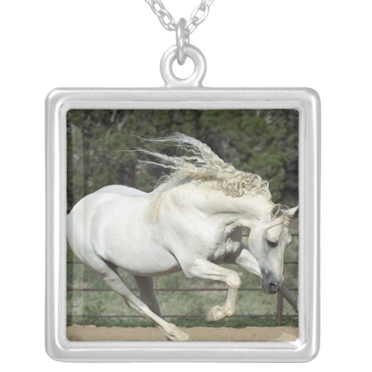 Andalusian Stallion running, PR Silver Plated Necklace