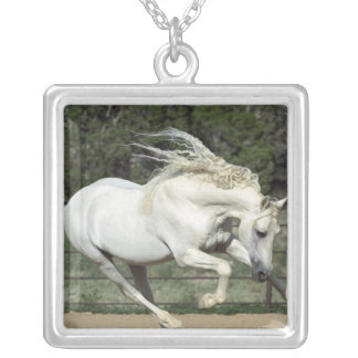 Andalusian Stallion running, PR Square Pendant Necklace