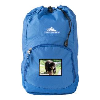 andean-bear-8.jpg mochila