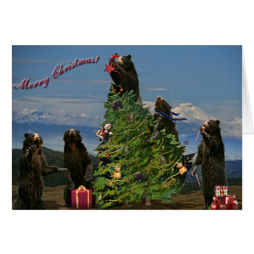 Andean Bear Christmas 2011 Greeting Cards
