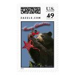Andean Bear Christmas Stamp