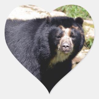 Andean bear heart sticker