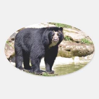 Andean bear oval sticker
