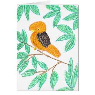 Andean CockOfTheRock (Rupicola peruvianus) Card
